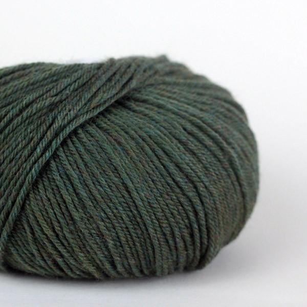 220 Superwash - Lichen (867)