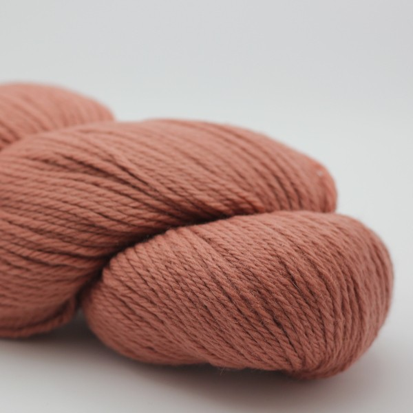 Cascade 220 - Crabapple (9681)
