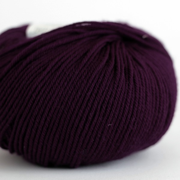 220 Superwash - Marionberry (880)