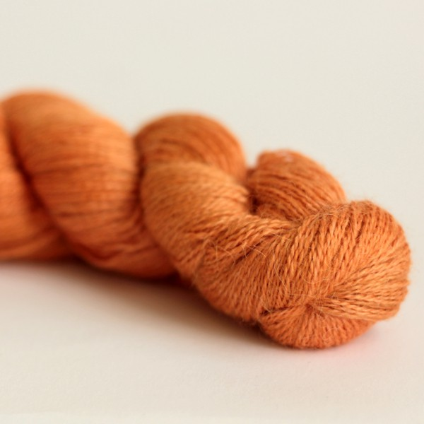 Silkpaca - Glazed Carrot