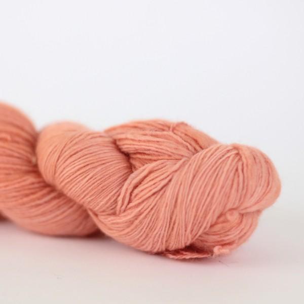 Lace - Apricot